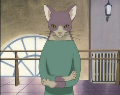 mr-cat